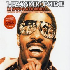 stevie wonder artwork sleeve